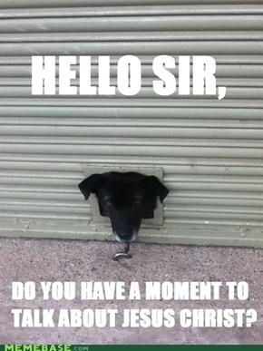 Jehovah Witness Dog