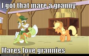 I got that mare a granny  Mares love grannies