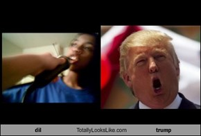 dil Totally Looks Like trump