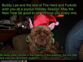 Buddy Lee and the rest of The Herd and Furkids wish you all a joyous Holiday Season. May the New Year be good to all. We love you every one.