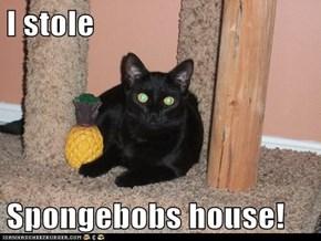 I stole  Spongebobs house!