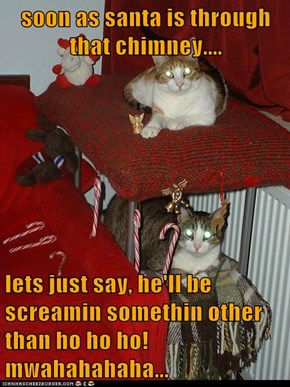 soon as santa is through that chimney....  lets just say, he'll be screamin somethin other than ho ho ho! mwahahahaha...