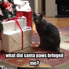 what did santa paws bringed me?
