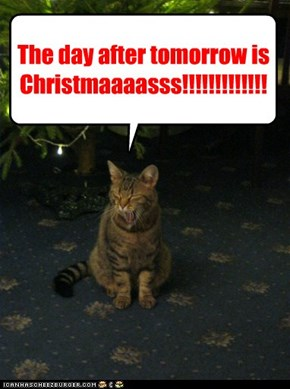 The day after tomorrow is Christmaaaasss!!!!!!!!!!!!!