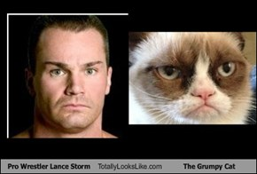 Pro Wrestler Lance Storm Totally Looks Like The Grumpy Cat