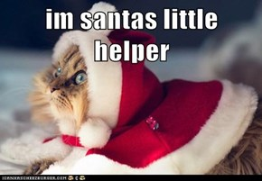 im santas little helper