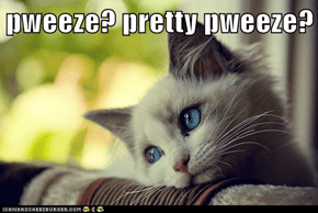 pweeze? pretty pweeze?