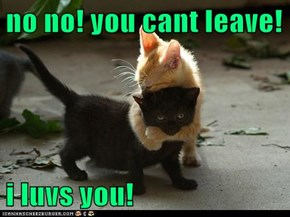 no no! you cant leave!  i luvs you!