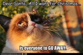 Dear Santa- All I want for Christmas...