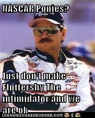 NASCAR Ponies?  Just don't make Fluttershy The intimidator and we are ok