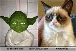 This Yoda Stocking Totally Looks Like Grumpy Cat