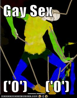 Gay Sex   ('0')__('0')