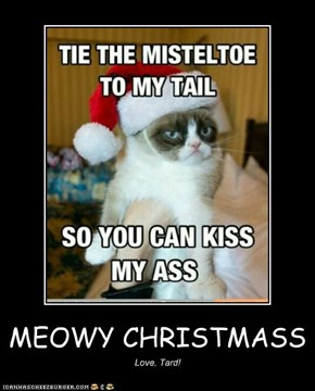 MEOWY CHRISTMASS