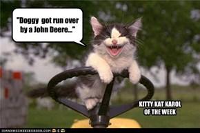 """""""Doggy  got run over by a John Deere..."""""""
