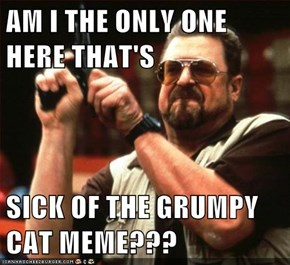 AM I THE ONLY ONE HERE THAT'S  SICK OF THE GRUMPY CAT MEME???