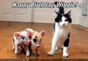Happy Birthday, Wiggie!