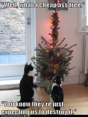 """""""Well, what a cheap ass tree.""""  """"You know they're just expecting us to destroy it."""""""