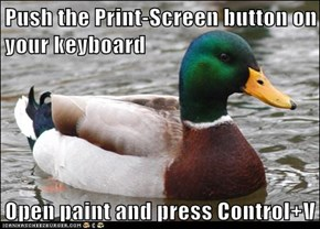 Push the Print-Screen button on your keyboard  Open paint and press Control+V