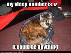 Face It, I'm a Hefty Sleeper