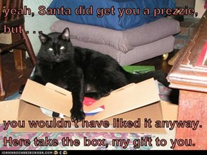 yeah, Santa did get you a prezzie, but...