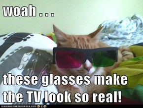 woah . . .  these glasses make the TV look so real!