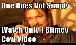 One Does Not Simply  Watch Only 1 Blimey Cow Video