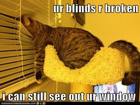 ur blinds r broken  i can still see out ur window