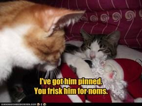Cats don't really grok the spirit of Santa.