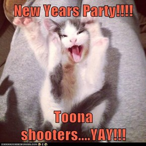 New Years Party!!!!  Toona shooters....YAY!!!