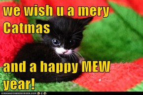we wish u a mery Catmas  and a happy MEW year!