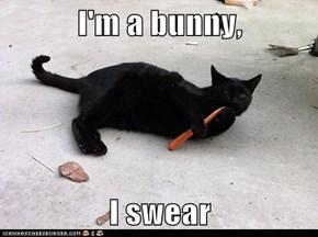 I'm a bunny,  I swear
