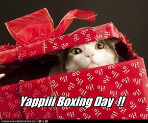 Yappiii Boxing Day  !!