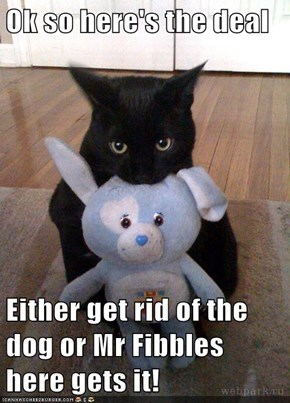 Ok so here's the deal  Either get rid of the dog or Mr Fibbles here gets it!