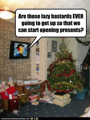 Are those lazy bastards EVER going to get up so that we can start opening presents?