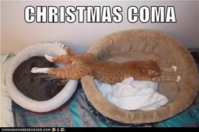 CHRISTMAS COMA