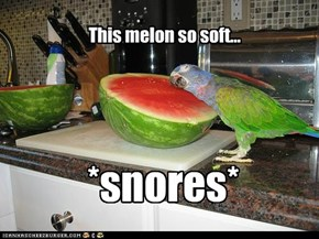 Pillowmelon