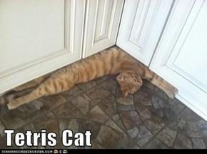 Tetris Cat