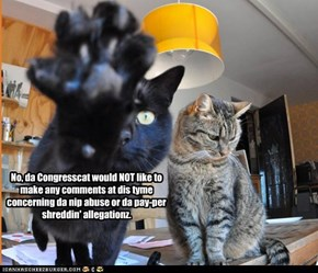 No, da Congresscat would NOT like to make any comments at dis tyme concerning da nip abuse or da pay-per shreddin' allegationz.