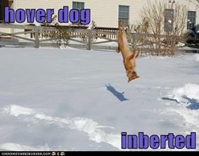 hover dog  inberted