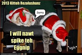 2013 Kitteh Rezolushunz