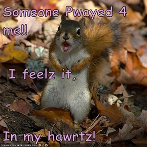 Someone Pwayed 4 me!!  I feelz it, In my hawrtz!