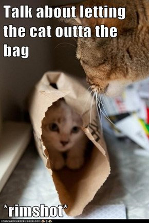 Talk about letting the cat outta the bag  *rimshot*