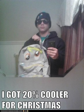 I GOT 20% COOLER FOR CHRISTMAS