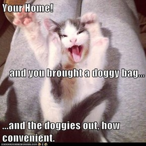 Your Home! and you brought a doggy bag... ...and the doggies out, how convenient.