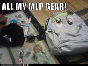 ALL MY MLP GEAR!