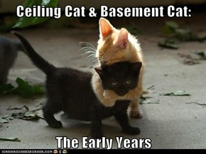 Ceiling Cat & Basement Cat:  The Early Years