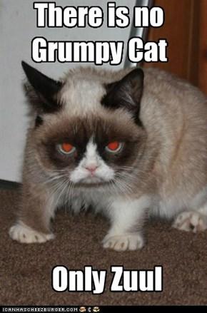 No Grumpy Cat. Only Zuul