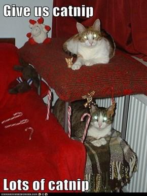 Give us catnip  Lots of catnip