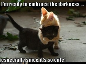 I'm ready to embrace the darkness ...  especially since it's so cute!
