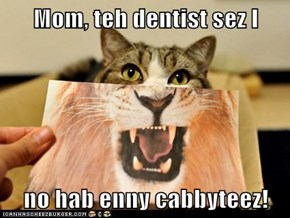 Mom, teh dentist sez I   no hab enny cabbyteez!